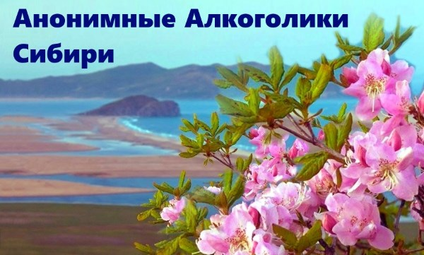 Анонимные Алкоголики Сибири